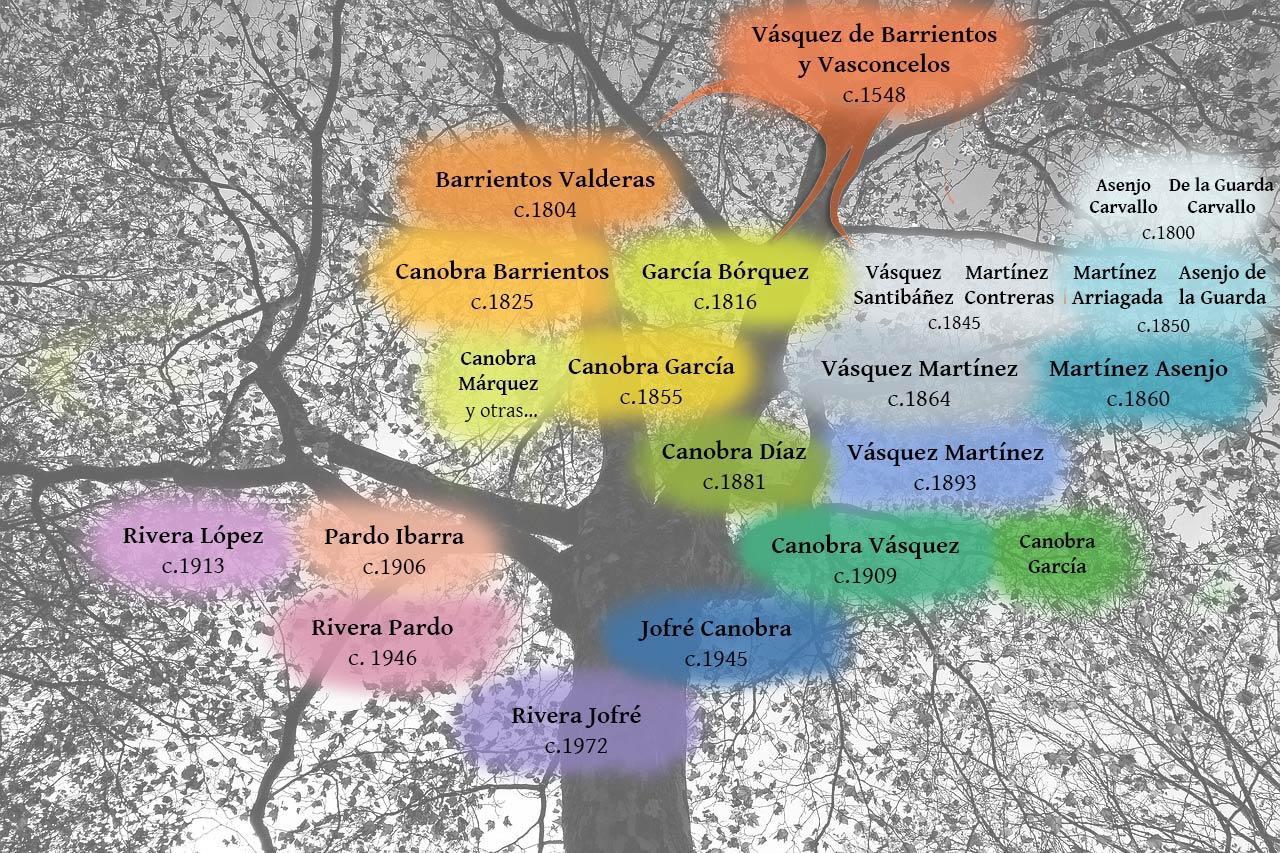 Árbol de apellidos de Chile estudiados en el Clan Genealógico